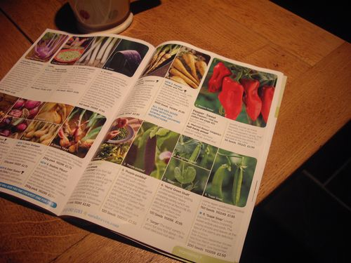 Tempting seed catalogues