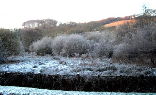Winter in a Cornish valley